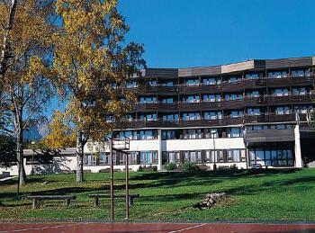 2006-hutnik