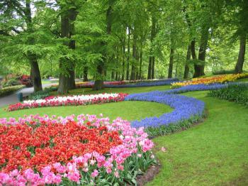 Keukenhof - největší květinový park na světě - Keukenhof